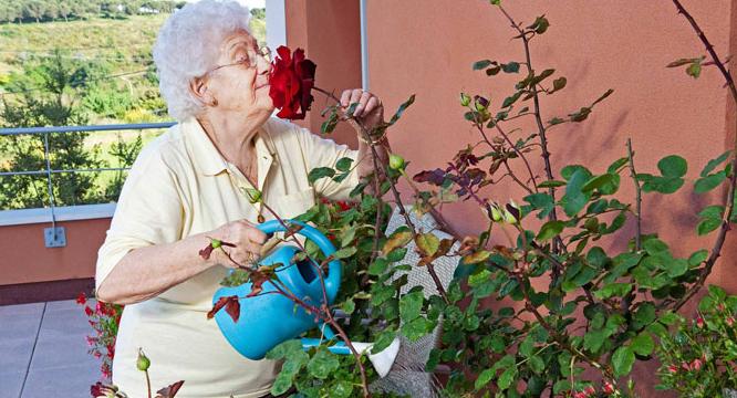 ¿Qué seguros necesito para una residencia de ancianos?