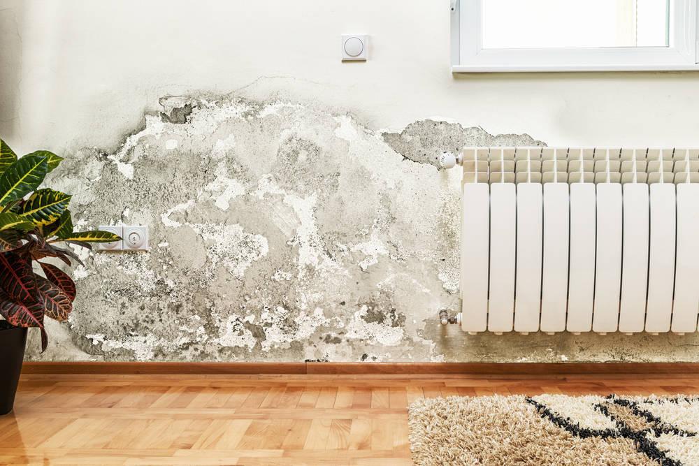 ¿Cómo se tratan las humedades en los domicilios?